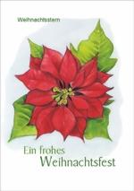 taktile Glückwunschkarte: Weihnachtsstern