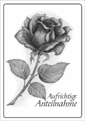 taktile Trauerkarte: Rose, Aufrichtige Anteilnahme